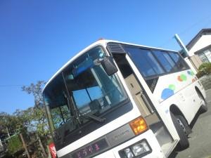 KC462177